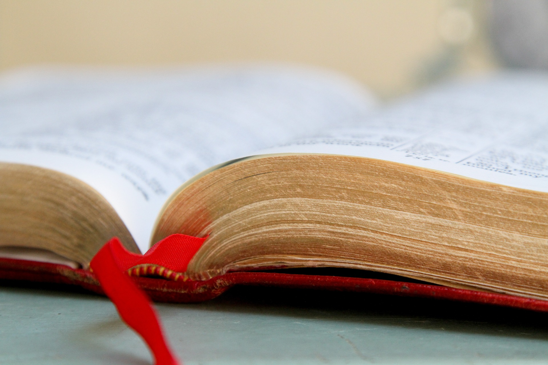 Know the Bible. Grow in Your Faith.